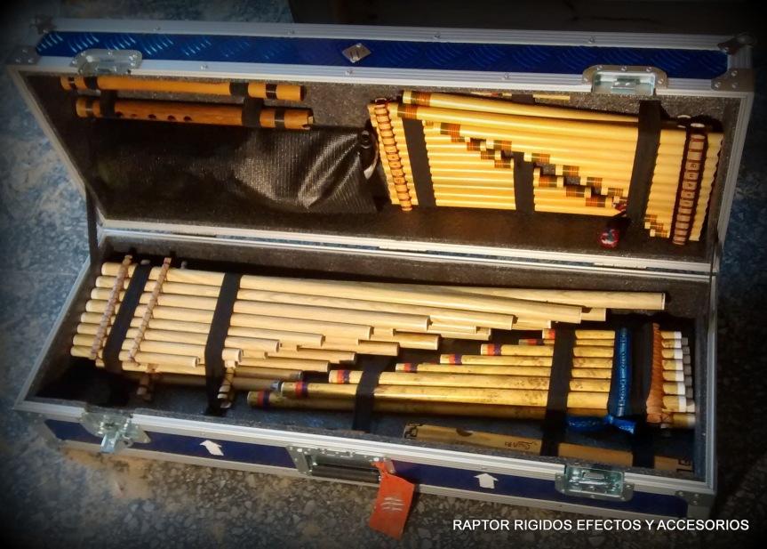 Anvil o estuche rigido para instrumentosandinos